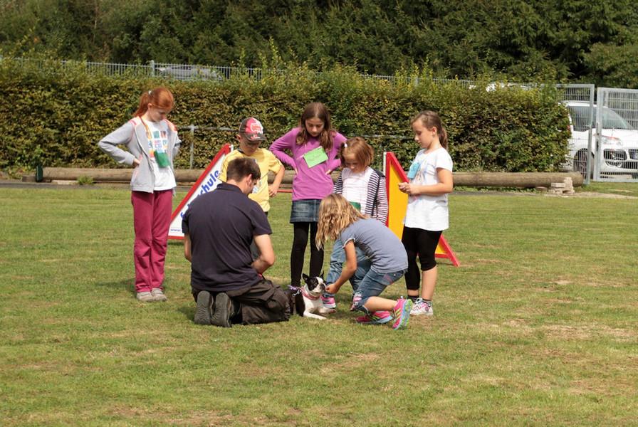 Verein der Hundefreunde Gauangelloch e.V. - Kinderferienprogramm 31.08 ...
